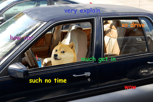 All Aboard the Dogemobile: wow