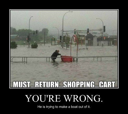 funny,idiots,shopping cart