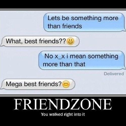 best friends,friendzone,funny,texts