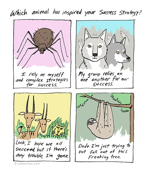 animals critters sloths spiders web comics wolves - 7948542208