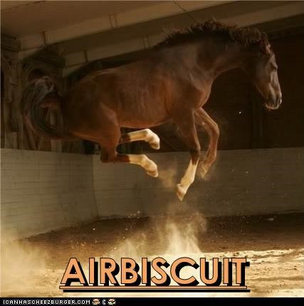 jump funny horses puns