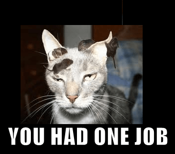 Cats FAIL mice you had one job - 7949740032