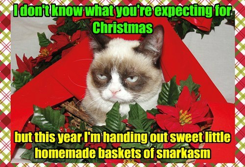 I don't know what you're expecting for Christmas but this year I'm handing out sweet little homemade baskets of snarkasm