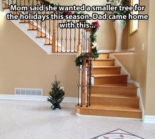 christmas trees,there I fixed it,dads,g rated
