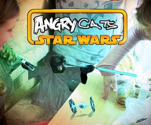 Games - ANGRYCAT STAR WARS