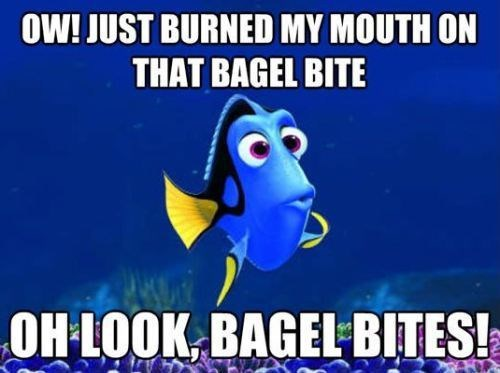 Memes,finding nemo,food,bagel bites,dory