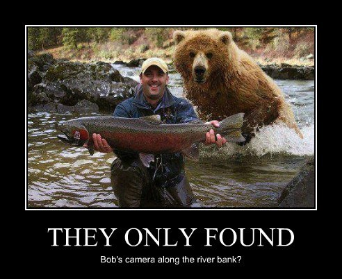 fishing salmon bear camera funny