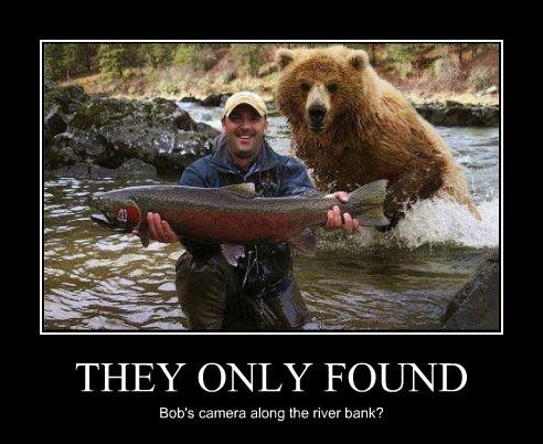 fishing salmon bear camera funny - 7951581184
