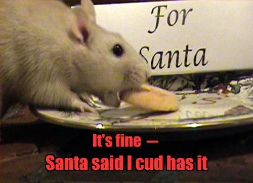 cookies mice funny rats santa claus fib - 7951595520