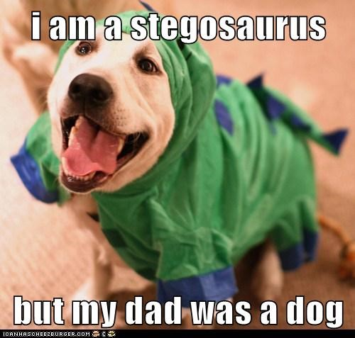 costume cute dogs dinosaurs