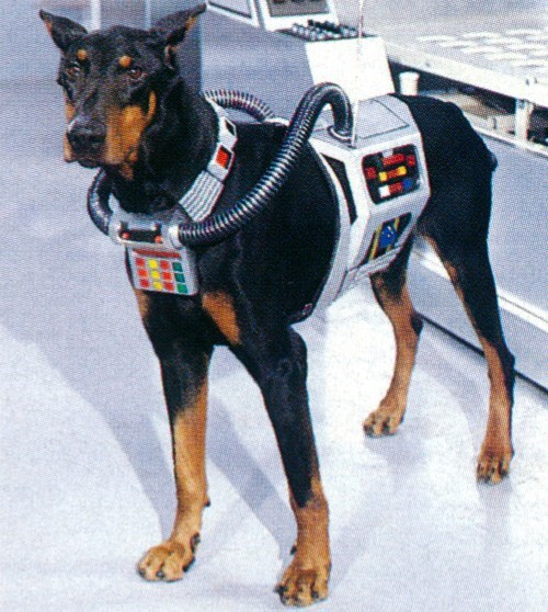 dogs robots wtf i'd see that movie