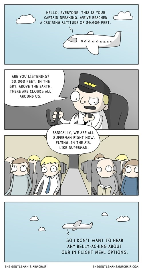 airplanes,life,web comics