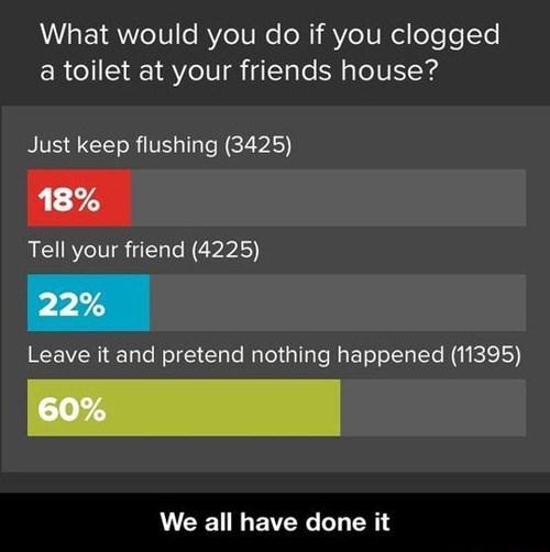 clogged polls shame toilets - 7952153344