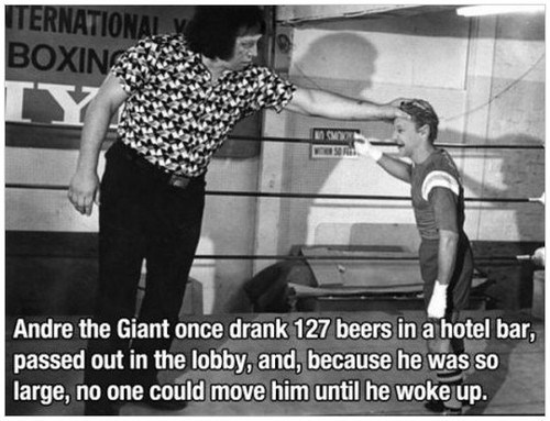 beer andre the giant amazing funny after 12 - 7952231936
