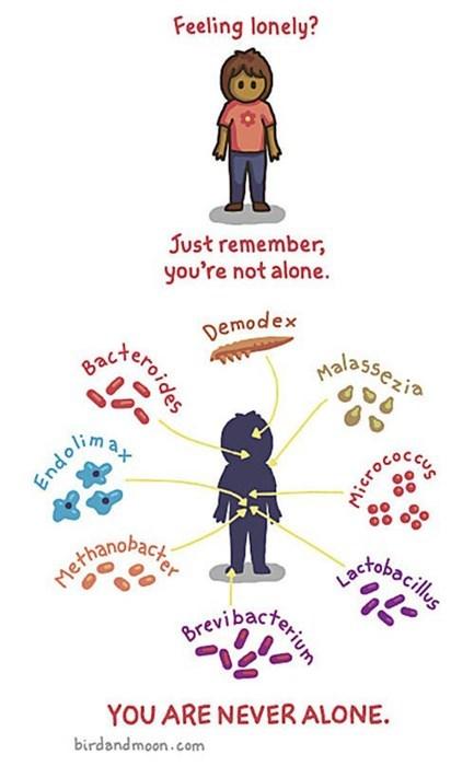 bacteria germs sad but true web comics lonely times - 7952320256