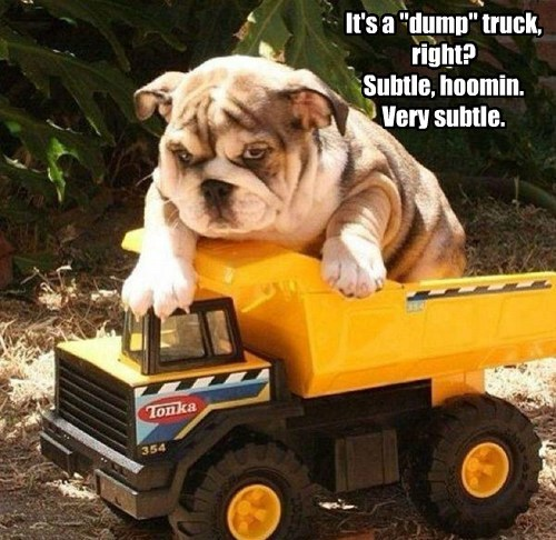 dogs,puppies,puns,dump truck