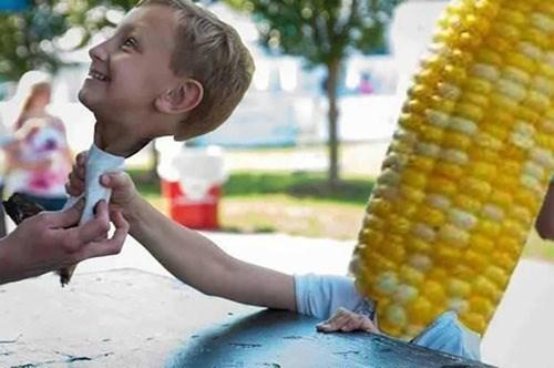 corn wtf - 7954043904