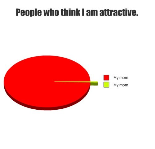 attractiveness moms parents Pie Chart - 7955432960
