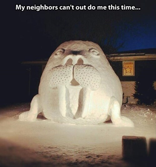 flipper snow funny puns neighbors walruses