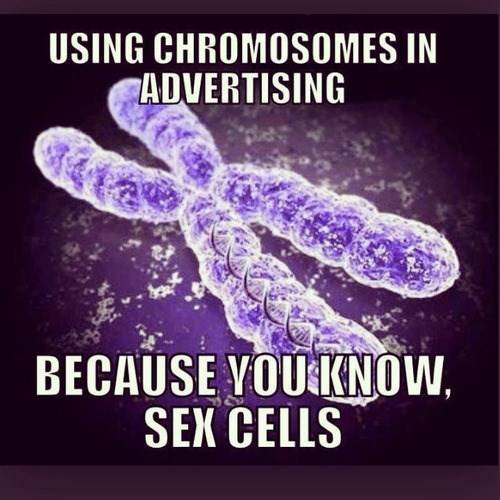 advertising puns science biology - 7958240256