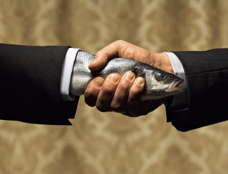 fish handshake wtf - 7958323712
