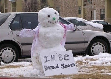 sign,snowman,winter