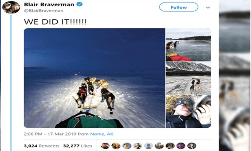 alaska journey sled dog iditarod - 7959301