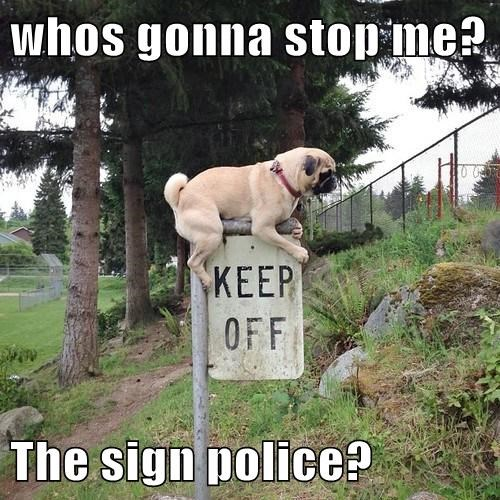 dogs police signs rebel - 7960185600