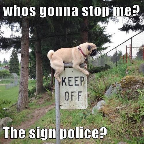 police signs rebel - 7960185600