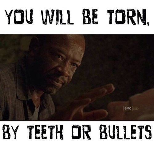 morgan,torn,The Walking Dead,death to all