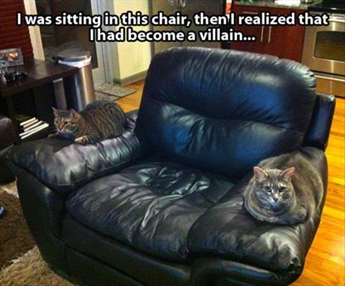 Cats chair cute funny minions villain - 7960655616