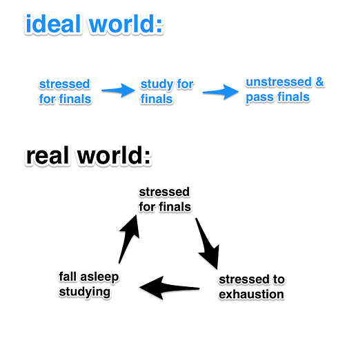 finals cycle studying school
