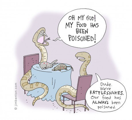 poison snakes web comics - 7961834240