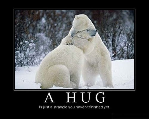bears hugs funny strangle - 7961881344