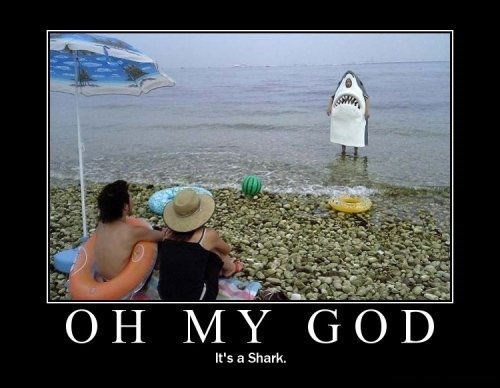 beach funny landshark scary wtf shark - 7961985280