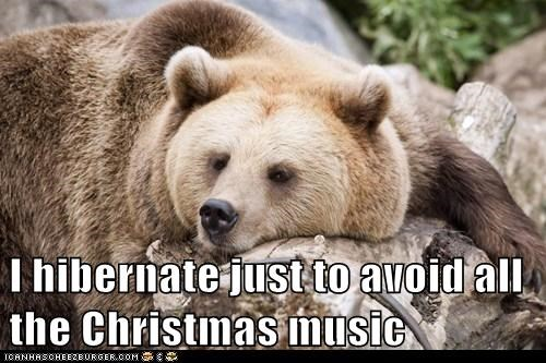 bears christmas funny Music hibernate - 7961995520