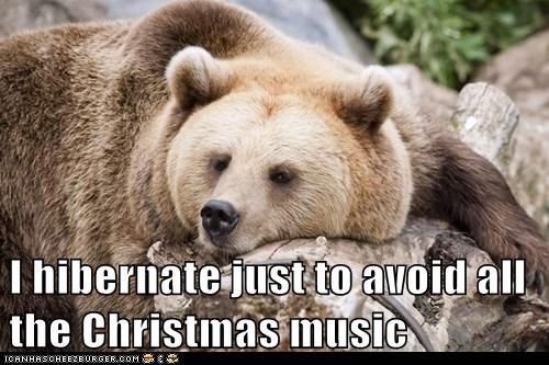 bears christmas funny Music hibernate - 7961995520