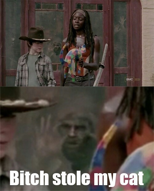 michonne The Walking Dead too damn gorgeous - 7962194176