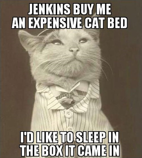 butler box Cats funny snobby rich - 7962241792