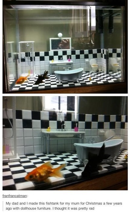aquarium bathroom fish design - 7962353408