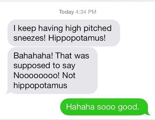 autocorrect,hippopotamus,sneezes,text