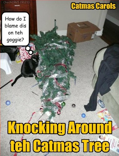 Catmas Carols Knocking Around teh Catmas Tree How do I blame dis on teh goggie? Chech1965 191213