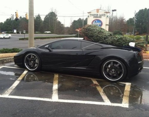 cars,christmas trees,there I fixed it,g rated