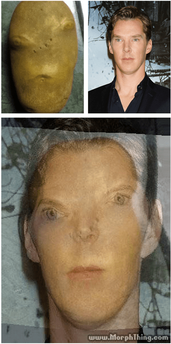 benedict cumberbatch,celeb,totally looks like,potato
