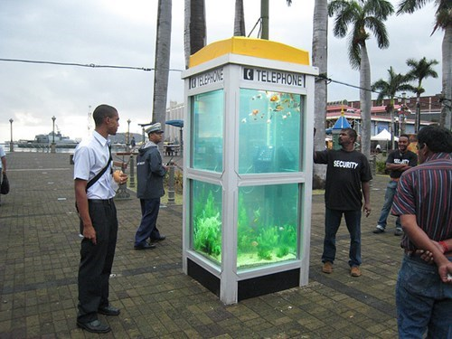 aquariums,fish,wtf phone booths
