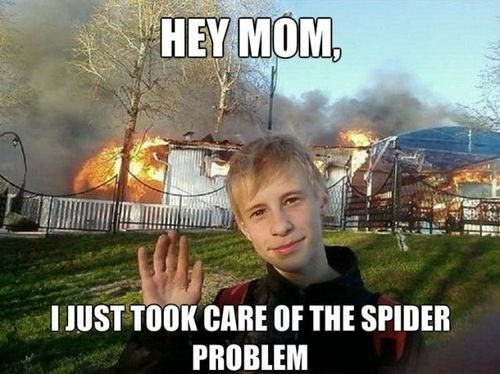 arson,nope,spiders