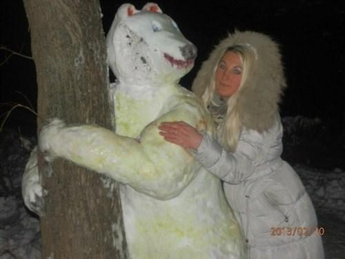 bears,snow,wtf