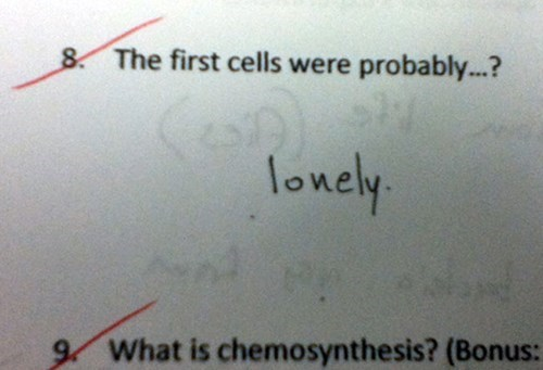 Text - 8 The first cells were probably...? lonely 9 What is chemosynthesis? (Bonus: