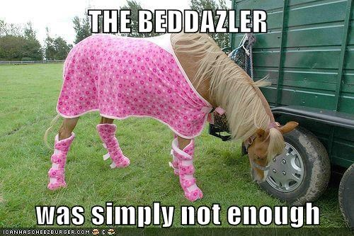 fashion funny horses - 7964257536