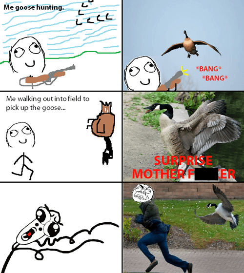 geese hunting - 7965265152